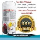 Diazyme 256 1 kilo