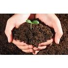 gül hobi yeşil alan organik gübre çim sahalar bahçe toprağı