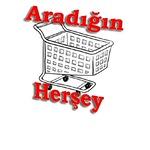 aradiginherseyn11