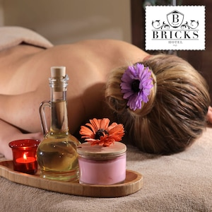 Bricks Hotel Airport SPA