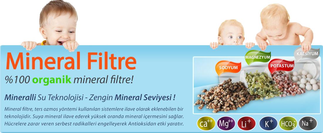 mineralbebek-meyve.jpg (1100×454)