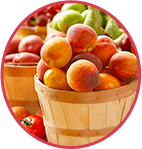 Meyve Özleri